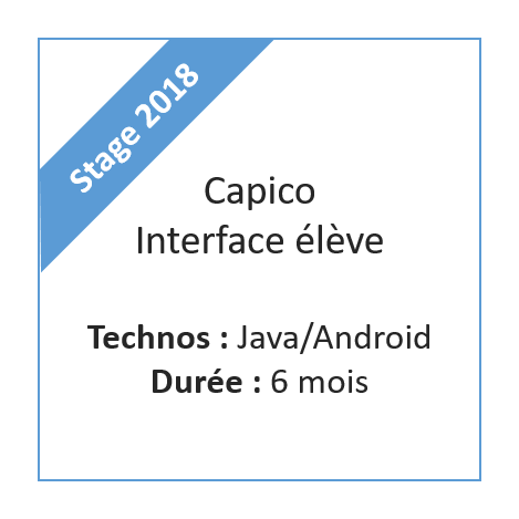 Stage Capico élève