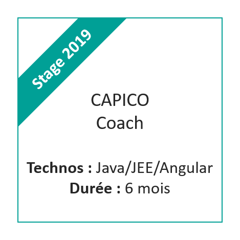Stage Capico Coach 2019