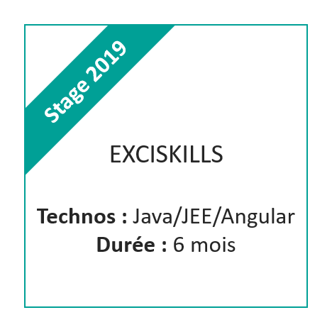 Stage Exciskills 2019